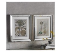 Gallery Direct  5055999245326 Botanica Floral II Framed Art Set of 2pc.