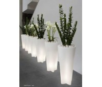 Linea 15056 Flower LED